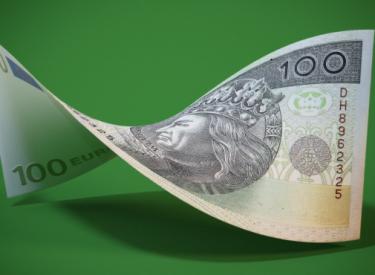 money_polish_zloty