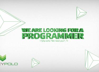 moneypolo_programmer_en