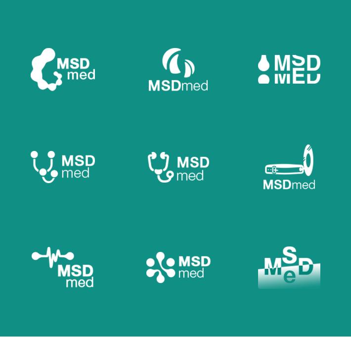 msd_logo_screenshot_001